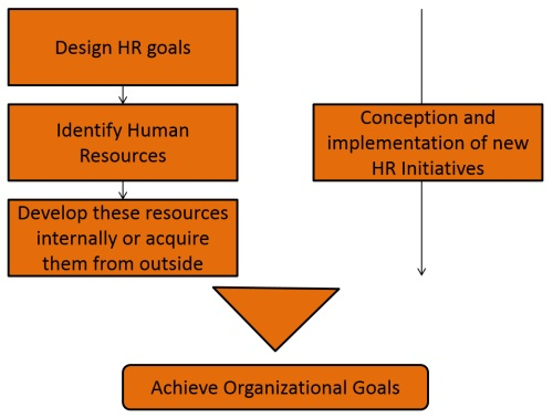 how to become a certified human resources professional